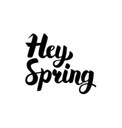 Hey spring handwritten calligraphy vector
