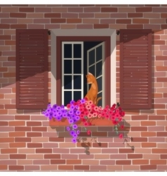 Open window and the cat vector