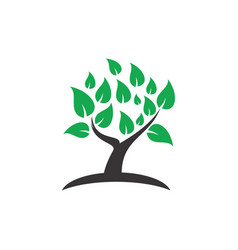 tree decorative logo image vector image