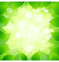 Green framing with leaves vector