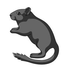 Gray gerbilanimals single icon in cartoon style vector