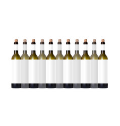 Transparent bottle with red wine and glass vector