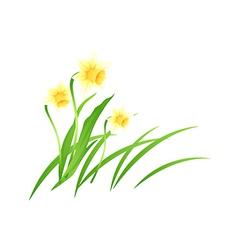 Icon flower vector