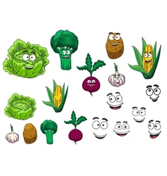 Fresh grocery vegetables set vector