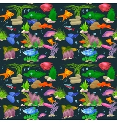 Aquarium fish seamless pattern vector image