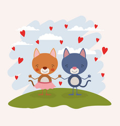Color scene sky landscape with couple of kittens vector