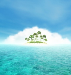 Tropical Island With Palms vector image