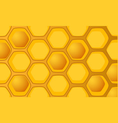 Honeycomb with full and empty vector