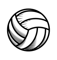 Volleyball icon sport concept graphic vector