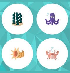 Flat icon nature set of seashell alga cancer and vector