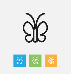 Of zoology symbol on moth vector