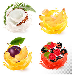 set of fruit juice splash coconut strawberry vector image vector image