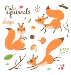 Cartoon cute squirrel little funny squirrels vector