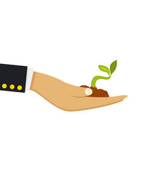 hand holding seedling on vector image