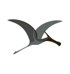 Pterodactyl dinosaur vector