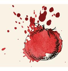 Tomato sketch vector