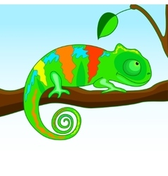 Chameleon on the branch vector