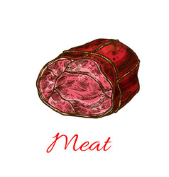 beef meat roll sketch for food design vector image