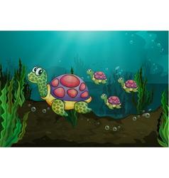 Underwater turtles vector