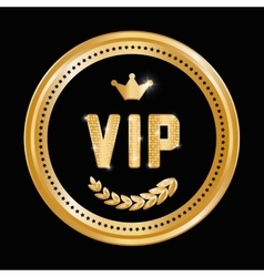 Vip design exclusive and premium concept vector