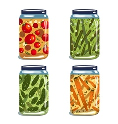 Bright canned pickled vegetables collection vector