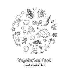 Hand drawn set of vegeterian food vector