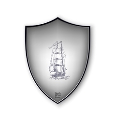 Sailing ship on the shield format vector image