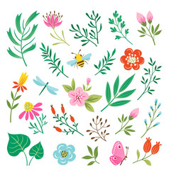 Floral design elements and insects vector