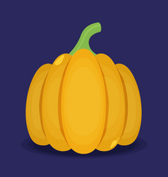 Pumpkin isolated on background flat vector