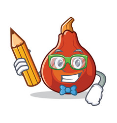 Student red kuri squash character cartoon vector