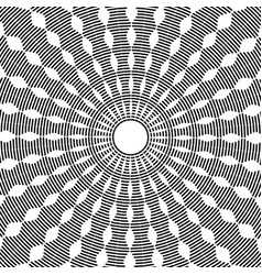 Rotation pattern vector