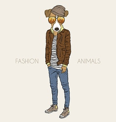 Fashion of jack russel terrier dressed up in vector