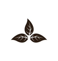 Tobacco-Leaves-380x400 vector image