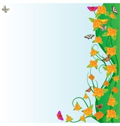 Roses and butterflies vector