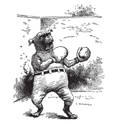 A dog wearing boxing gloves and pants vintage vector