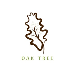 Oak tree in the leaf vector