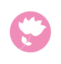flower nature flourishes icon vector image
