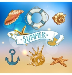 Summer Card with Sea Shells Anchor Lifeline vector image vector image