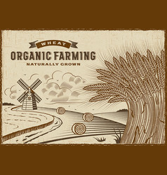 Wheat organic farming landscape vector