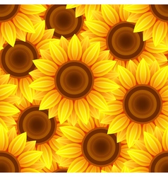 BAckground seamless pattern with sunflowers vector image