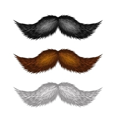 Brown black and white isolated mustaches set vector