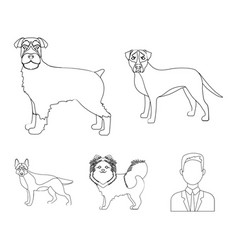 retriever terrier pomeranian and other web icon vector image