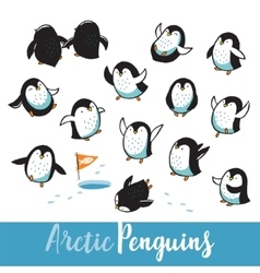 Set with funny hand drawn arctic penguins vector