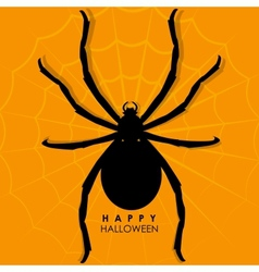 Spider on web for halloween background vector