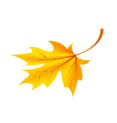 autumn golden yellow leaf icon vector image vector image