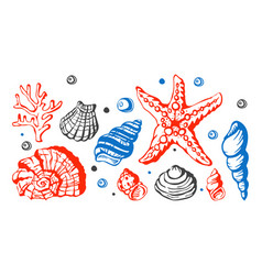 sea marine shells hand drawn sketch vector image