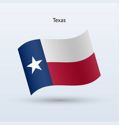 State of texas flag waving form vector