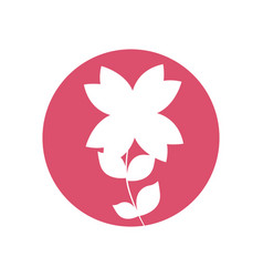 Beauty flower natural icon vector