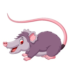 cute opossum cartoon posing vector image