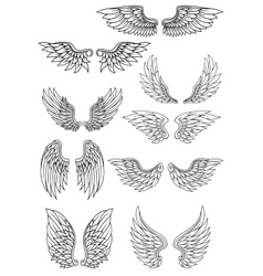 Set of outline heraldic wings vector image vector image